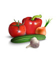 vegetables or veggies farmer harvest exotic vector image vector image