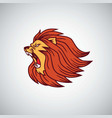 wild lion angry roaring head icon design vector image