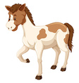 Horse with brown and white fur vector image