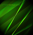Beautiful green background vector image