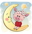 cute piggy girl is sitting on the moon vector image vector image
