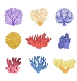 different types of tropical reef coral set vector image