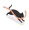 isometric black cat steals delicious sausages the vector image