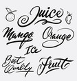 juice and fruit hand written typography vector image vector image