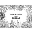 seaweed background reef aquatic weed and corals vector image vector image