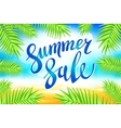 Summer sale lettering on blue background vector image vector image