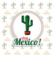 viva mexico invitation party cactus background vector image vector image