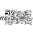 which image format do i choose text word cloud vector image vector image