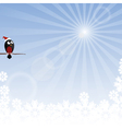 Winter background with rays and bullfinch vector image vector image