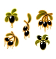 Black olives symbols set vector image