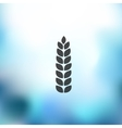 ears of wheat icon on blurred background vector image vector image