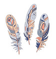 Feathers decorative set hand drawn