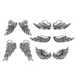 Hand-drawn Wings set vector image vector image