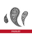 paisley motifs ink pen isolated vector image vector image
