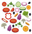salad vegetables food diet healthy vector image vector image