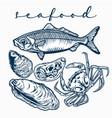 sea food set crab shell fish shrimp lobster blue vector image vector image