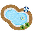 top view of swimming pool with rubber ring vector image