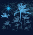 tropical background with palm trees at nigh vector image vector image