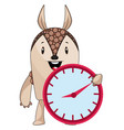 armadillo with clock on white background vector image vector image