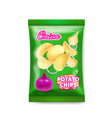 potato chips onion package ads vector image vector image