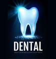 shining helthy tooth with lights stomatology vector image vector image