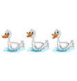 Smiling ducks vector image vector image