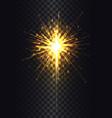 sparkler on stick poster vector image vector image