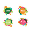 circle banner icon template vector image vector image