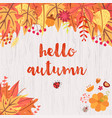 hello autumn design vector image vector image