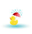 rubber ducky with an umbrella in rain icon vector image