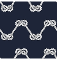 Seamless nautical rope pattern - Figure 8 knots vector image vector image