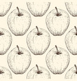 tomato handdrawn seamless pattern in the vector image vector image
