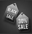 two black friday tag set vector image