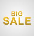 big sale text vector image