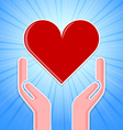 Caring hands with heart vector image