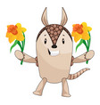 armadillo with flowers on white background vector image vector image