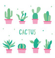 cactus icon flat design plants pot cartoon vector image vector image