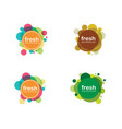 circle banner icon template vector image