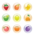 fruits button gray web 20 icons vector image