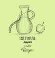 hand drawn apple cider vinegar and lettering vector image vector image