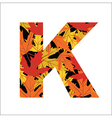 K Letter vector image vector image