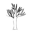 monochrome blurred silhouette of dry tree with vector image vector image
