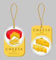 the cheese vector image