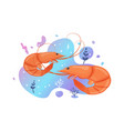 two cute shrimp in sea brightly-coloured vector image vector image