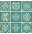 Abstract damask patterns set vector image