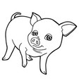 cartoon cute pig coloring page vector image