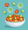 dish with fresh salad healthy food vector image vector image