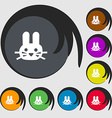 Rabbit icon sign Symbols on eight colored buttons vector image vector image