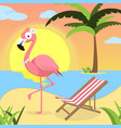 summer background with pink flamingo and red white vector image vector image