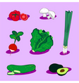 vegetable icons 4 vector image vector image